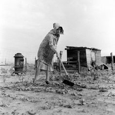 Dust Bowl 2